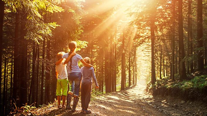 Une mère avec des fils en promenade dans une forêt en suivant un sentier de randonnée