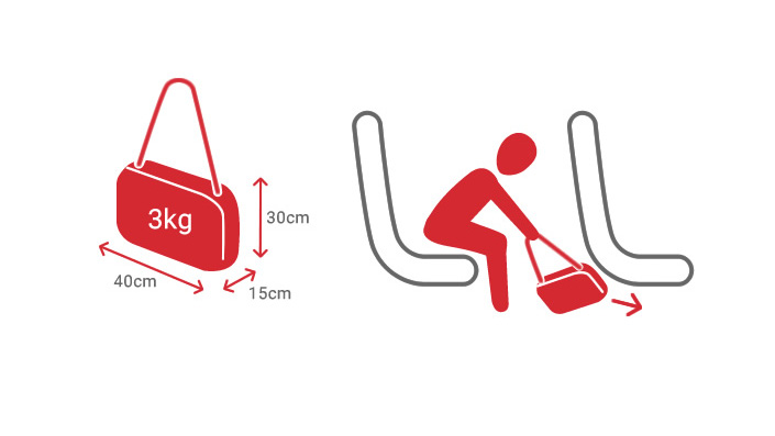 Small bags with a maximum size of 30 x 40 x 15cm and a weight of up to 3kg can be carried on board Czech Airlines aircraft under the seat in front of the passenger.